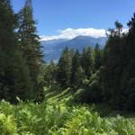 Le panorama depuis le terrain 2ème branche