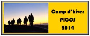 picos2014hiv